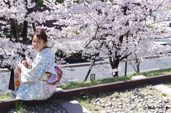 桜と水色の着物