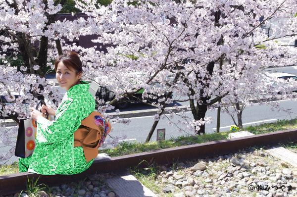桜と緑の着物