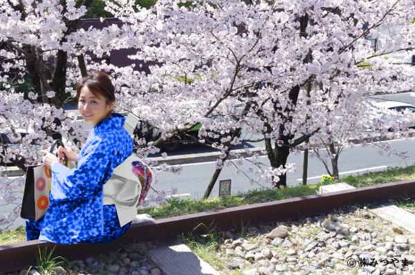 桜と青の着物