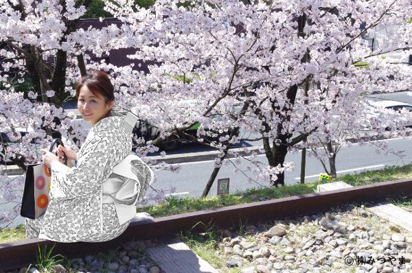 桜と白の着物