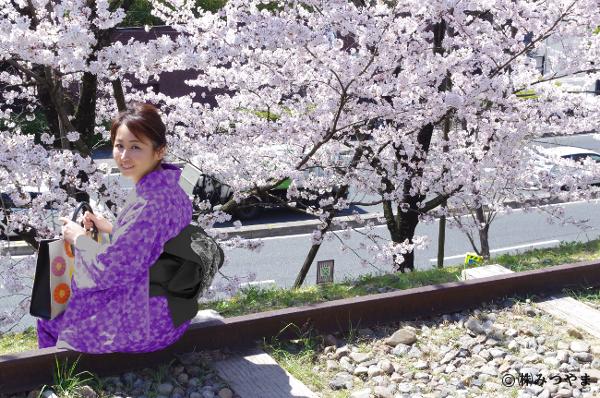 桜と紫の着物