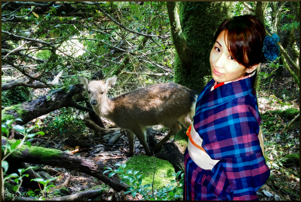 鹿とガーリー