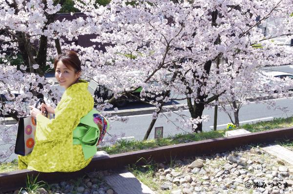 桜と黄色の着物
