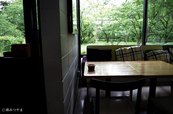 窓の外は植物園へと繋がっている