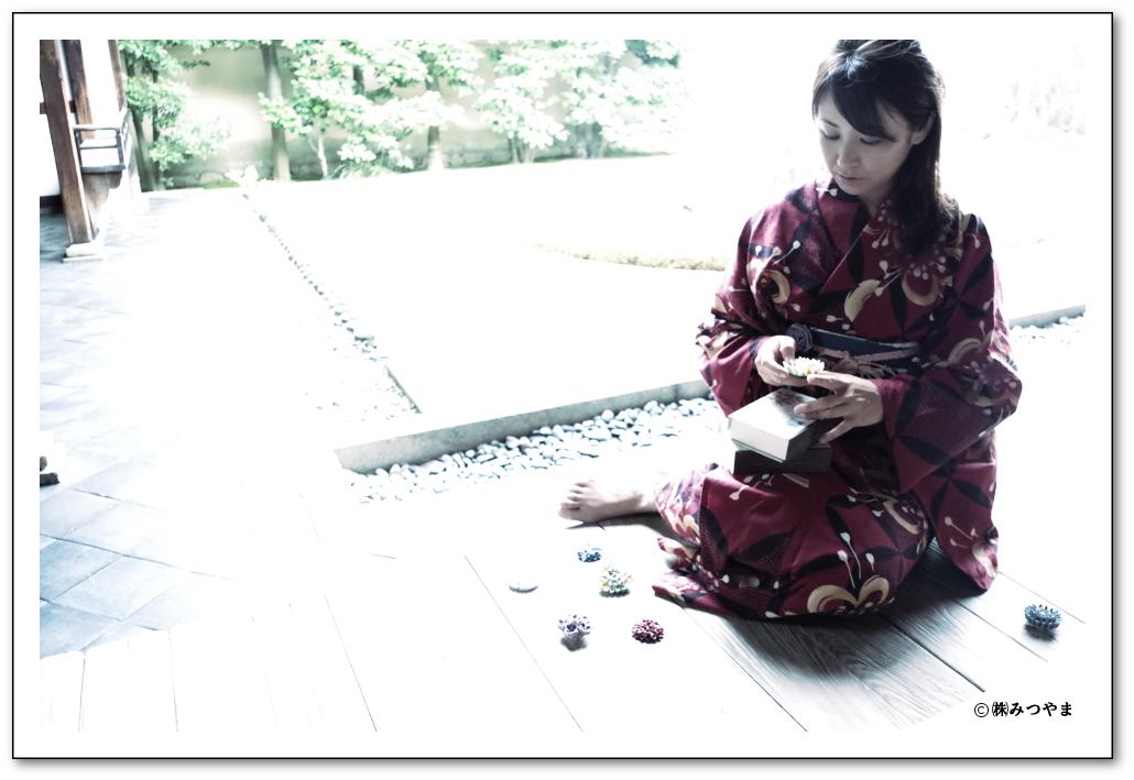 大徳寺 龍源院の写真・枯山水の庭にて