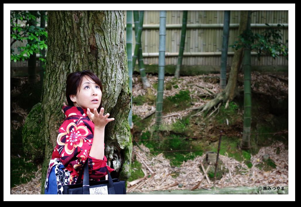 大徳寺の写真・浴衣女子と雨
