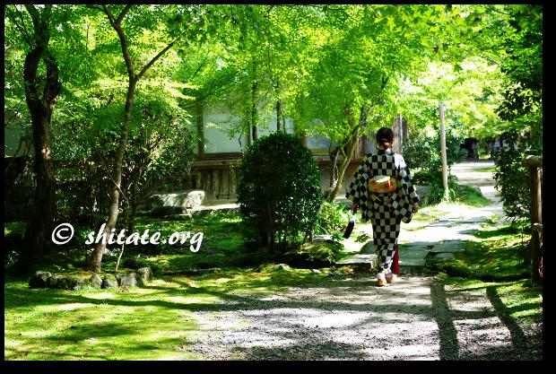 西明寺の庭とモダン着物女子