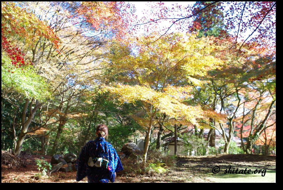神護寺の紅葉写真