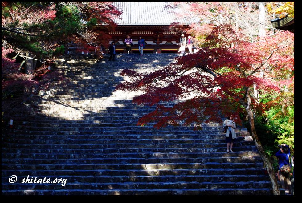 神護寺の階段・メインスポット