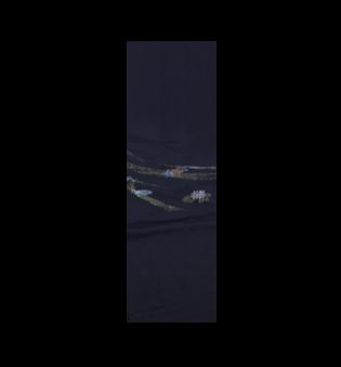 黒絵羽・胴部分1