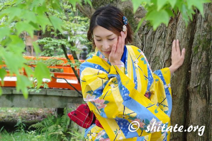 木と橋と浴衣女子の写真