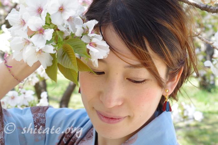 しだれ桜と浴衣女子のポートレート写真グラビア風