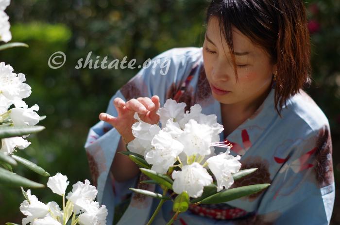 白い花と浴衣女子のポートレート写真