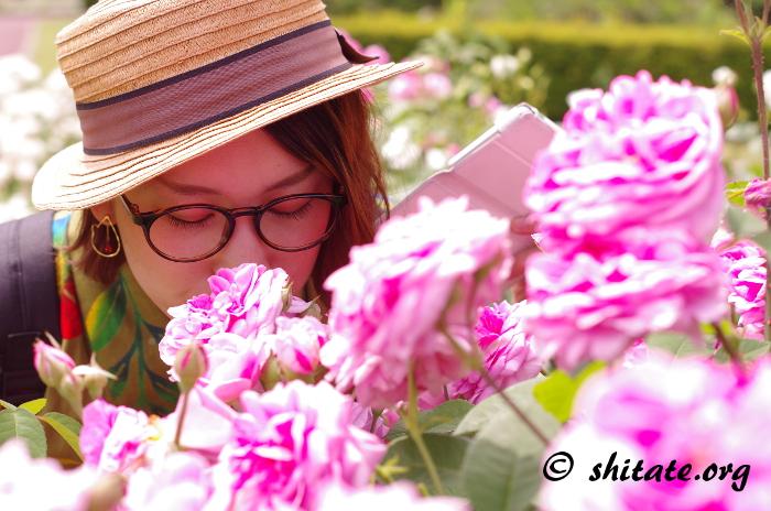 バラと眼鏡女子