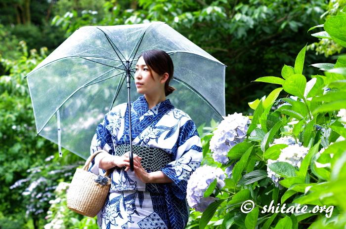傘と紫陽花と紺の浴衣