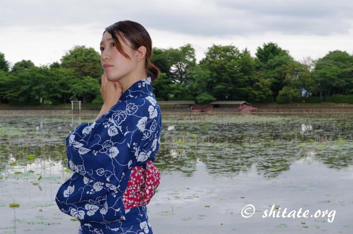 紺の浴衣女子と蓮の池
