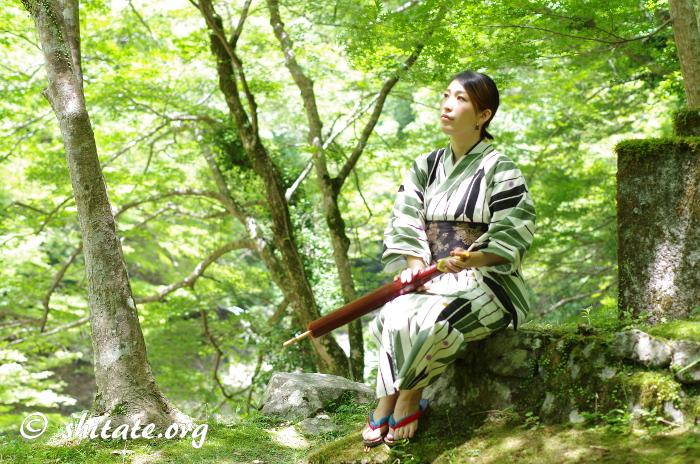 古典柄の浴衣女性と木々