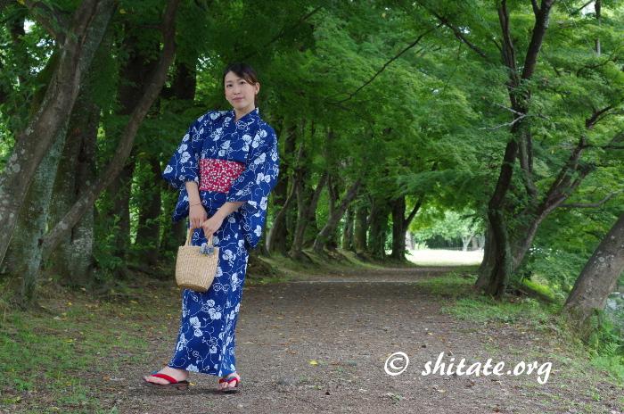 木のトンネルと紺の浴衣女子